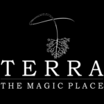 Terra The Magic Place